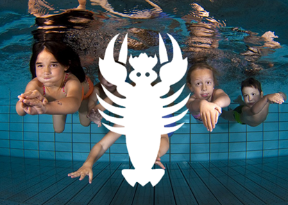 Picture of Kinderschwimmkurs Krebs
