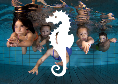 Picture of Kinderschwimmkurs Seepferd